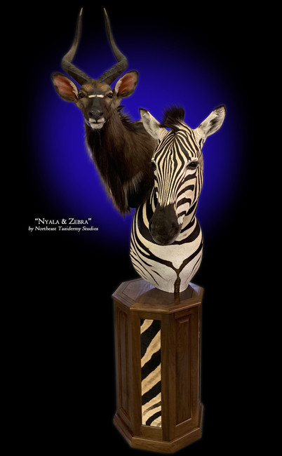 Nyala and Zebra Pedestal