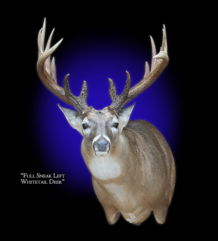 Whitetail Deer Full Sneak Left Mounts