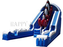 Glacier Falls Double Lane Slide  22' Bounce House Waterslide WET or DRY, Roo's Wet or Dry Slides - Jacksonville Florida Bounce House Rentals