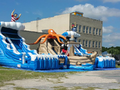 Treasure Island Interactive Park Bounce House Water Slide  22' and 20' WET or DRY