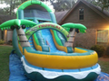 Coconut Palm Slide  19' Bounce House Waterslide WET or DRY