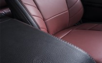 Leather Interiors