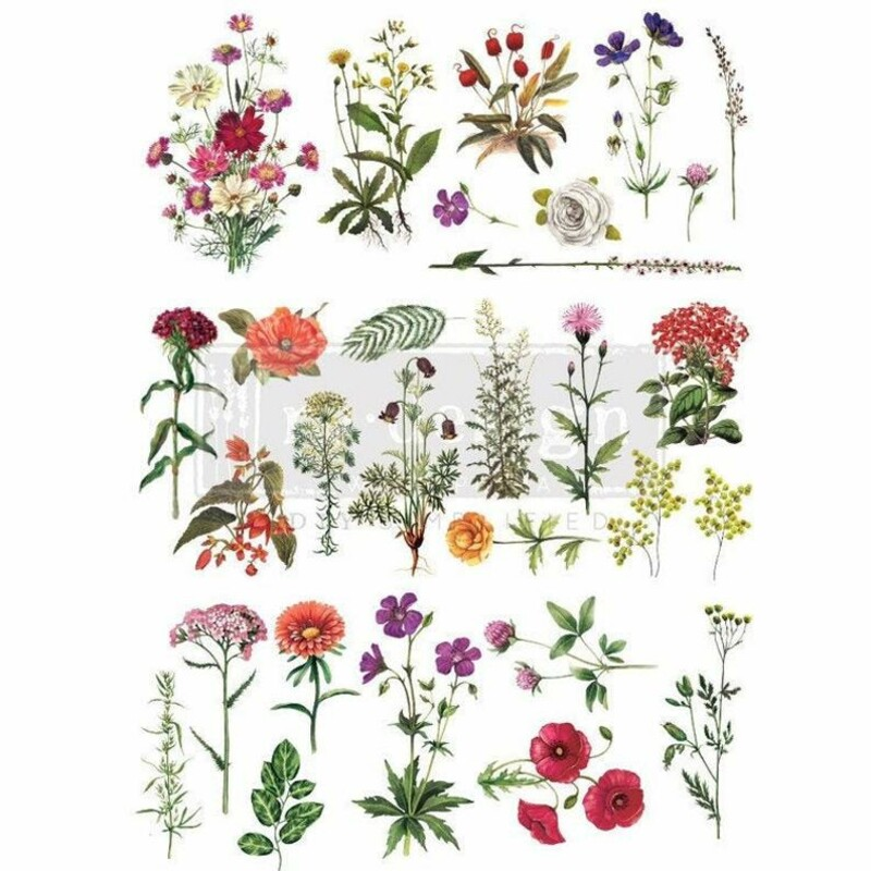 Floral Collection Paint Transfer