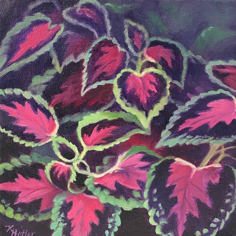 "Title:  Coleus Watermelon, Size: 8"" x 8"", Artist: Kay Hofler, Medium: Oil, Description: This beautiful and colorful plant has the delicious colors of a watermelon. It is framed with a black floater."