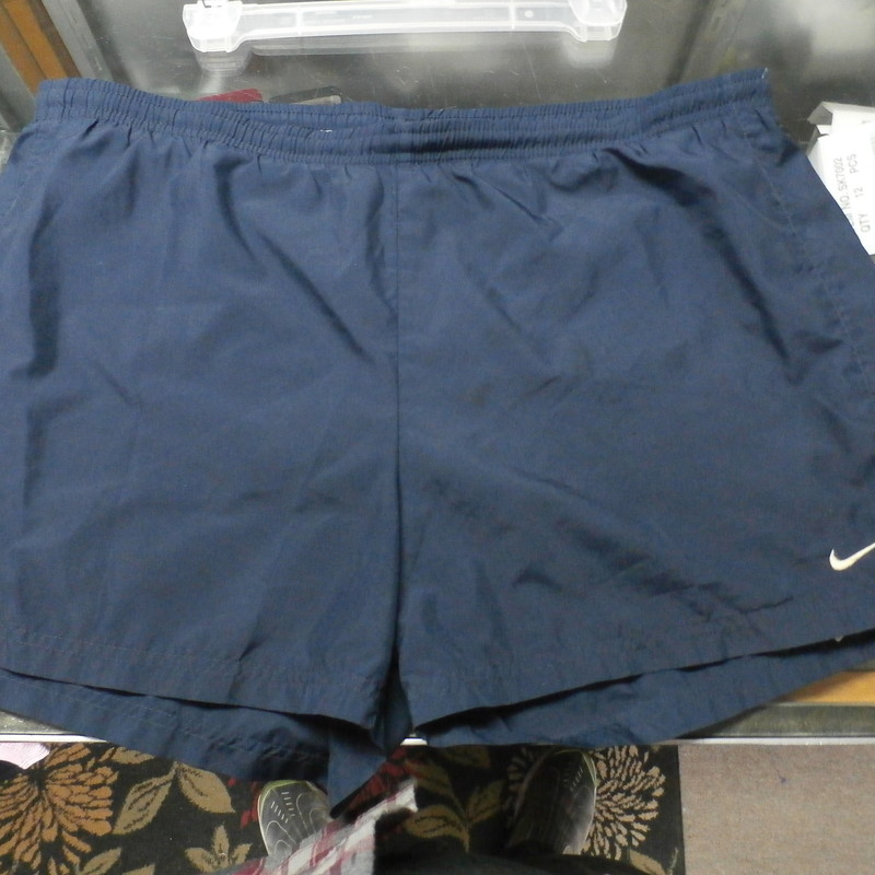 "Nike men's shorts blue size large 100% polyester #25898<br /> Rating: (see below) 3- Good Condition<br /> Team: n/a<br /> Player: n/a<br /> Brand: Nike<br /> Size: Men's Large-  (Measured Flat: Waist 19""; Length 14""; Inseam 4"")<br /> Measured flat: hip to hip; hip to hem; and groin to hem<br /> Color: blue<br /> Style: elastic waistband with drawstring<br /> Material: 100% polyester<br /> Condition: 3- Good Condition; wrinkled; some pilling and fuzz; material is stretched and worn from wearing and washing; heavy discoloration and fading; no rips or tears; embroidered logo is discolored (see photos)<br /> Item #:25898<br /> Shipping: FREE"