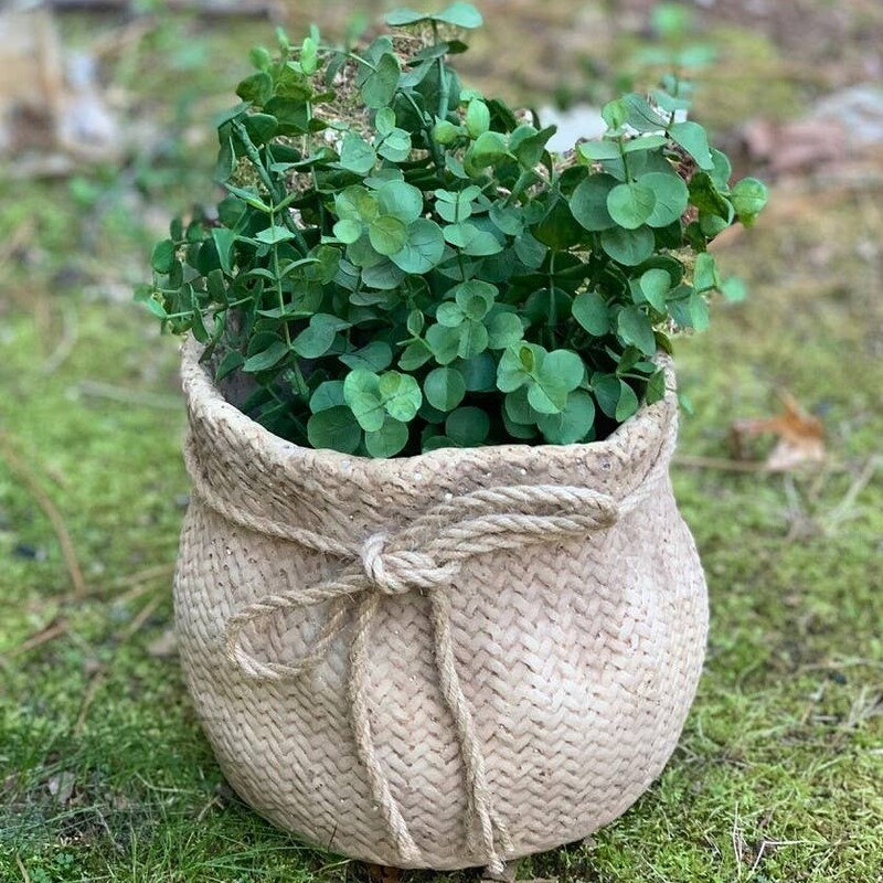 Small Cement Sack Planter.