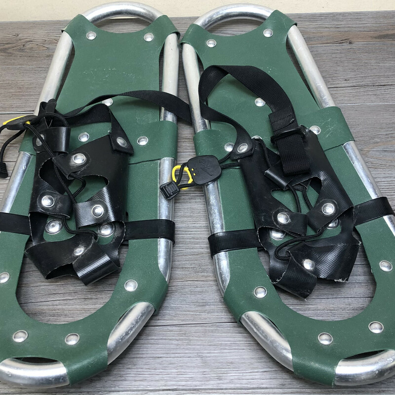 Powder Ridge SnowShoes.