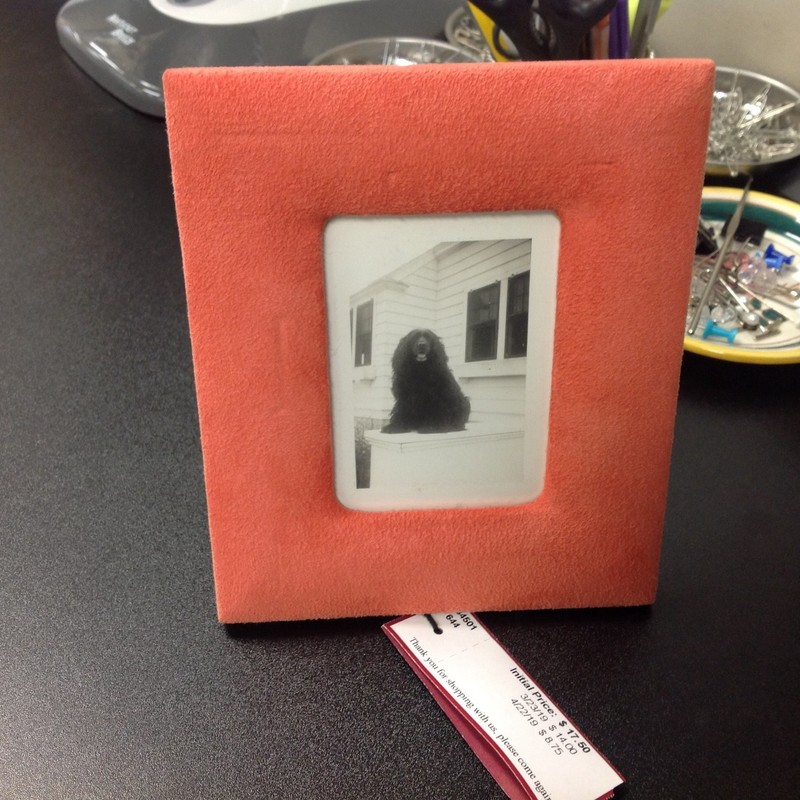 Suede Frame W/Dog, Coral, Size: 6x7