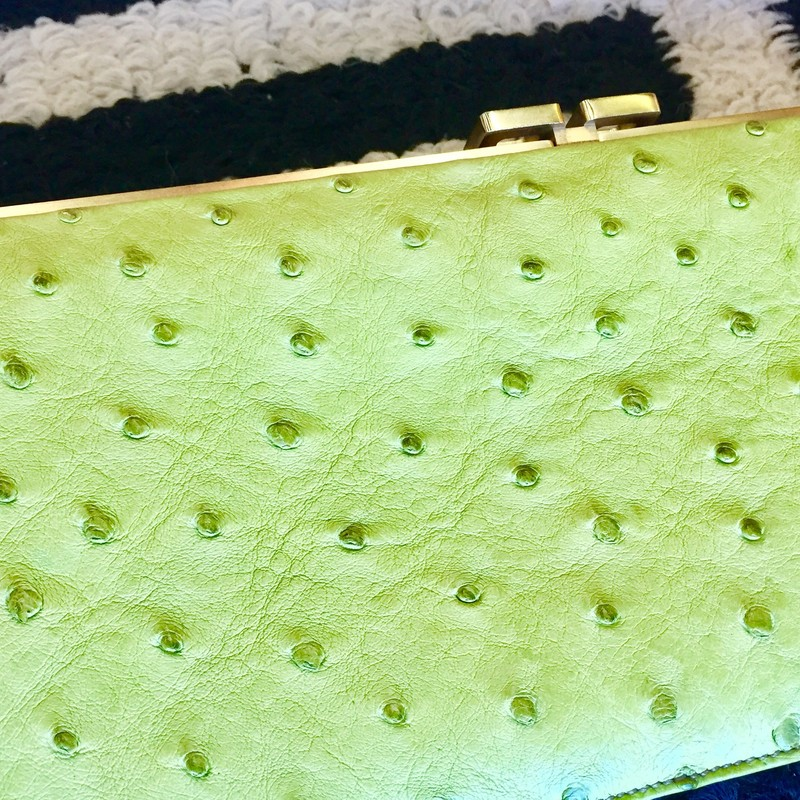 Suen Cooper clutch with light green leather exterior and a textured design. Comes with gold hardware and red interior leather. Perfect for any special event. No signs of exterior use but has a few markings on the interior. Removable gold strap and duster included. Retail: $2000 You don't want to miss this deal!!