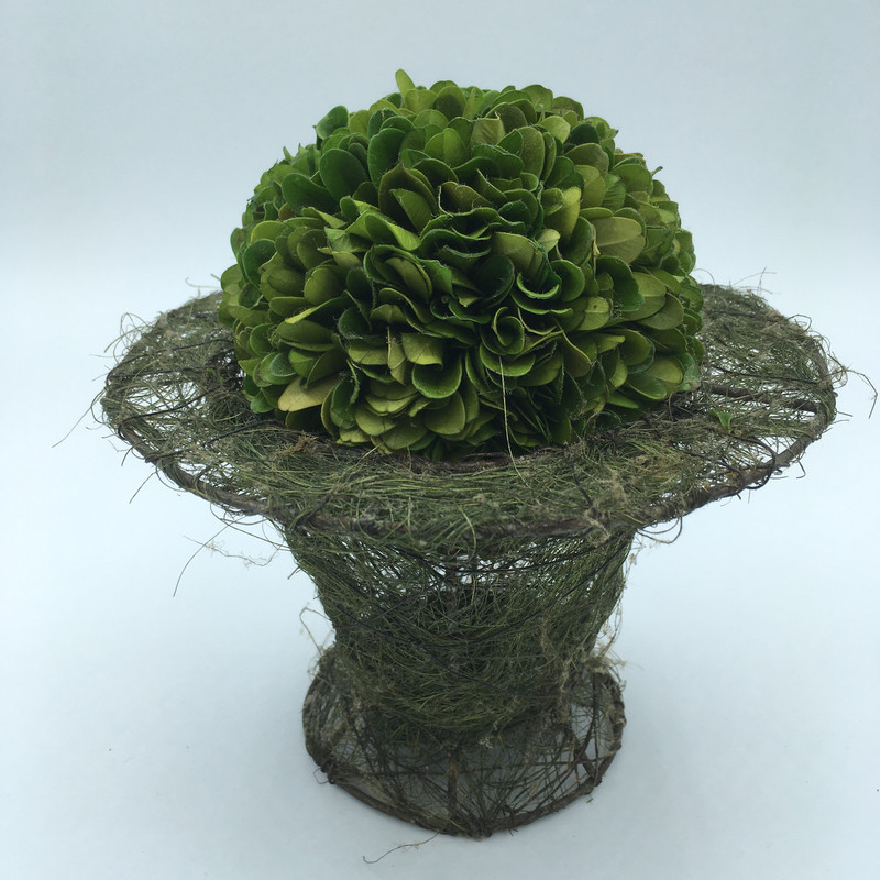 "Moss Planter W/ Boxwood insert<br /> Green,<br /> Size: 7"" X 7""<br /> Price - 16.00"