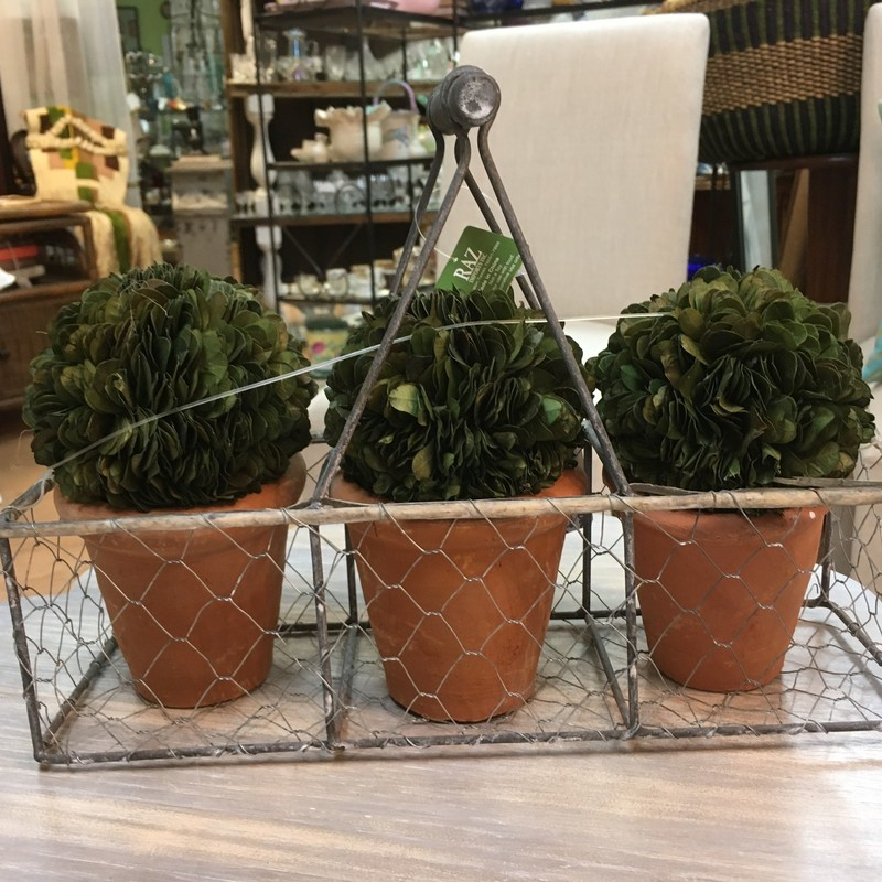 Item #2112560<br /> Metal Basket W/ 3 Boxwoods with Handle<br /> Cottage style<br /> Price - 22.00