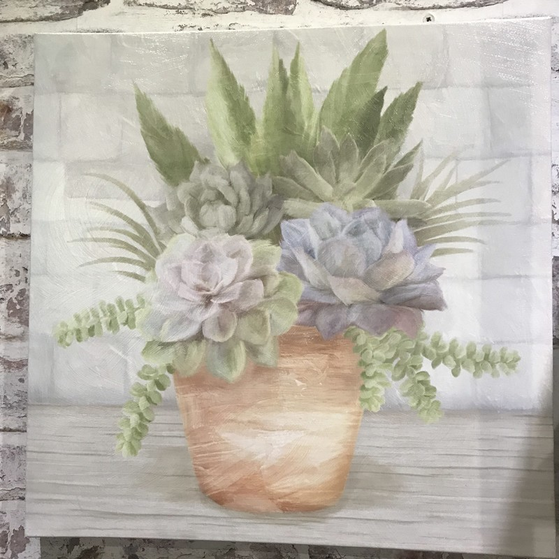 Soft coloring and detail make these succulents come to life with this wrapped canvas.  It will add serenenity to any room.<br /> Featured by Upscale Resale