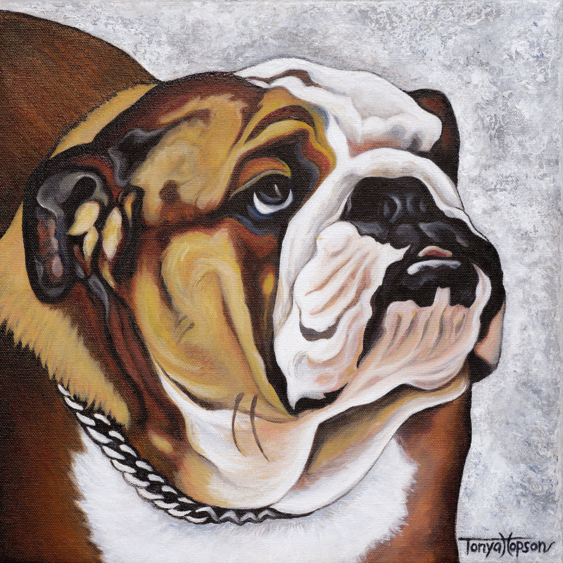 "Title: The Bulldog, Artist: Tonya Hopson, Medium: Acrylic on Canvas, Size: 12""x12"" Framed, Statement: The English Bulldog is not only a beloved pet but also a mascot to the United States Marine Corps, Atlanta GA football and our local Norfolk Academy to name a few.  This orginal acrylic painting has a textured palette knife background."