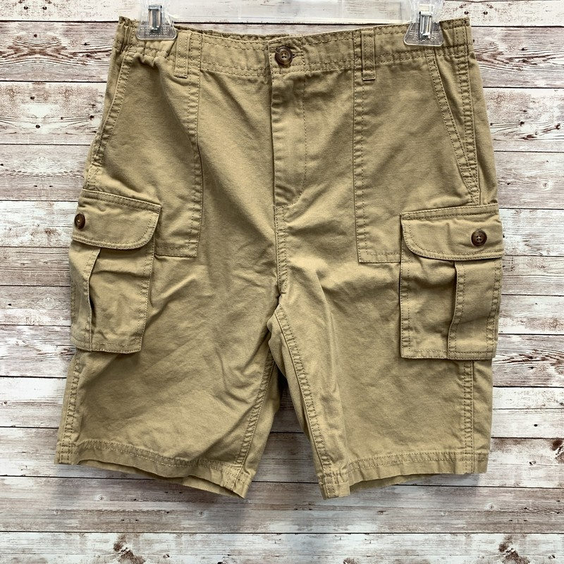 Lands End Shorts Cargo.