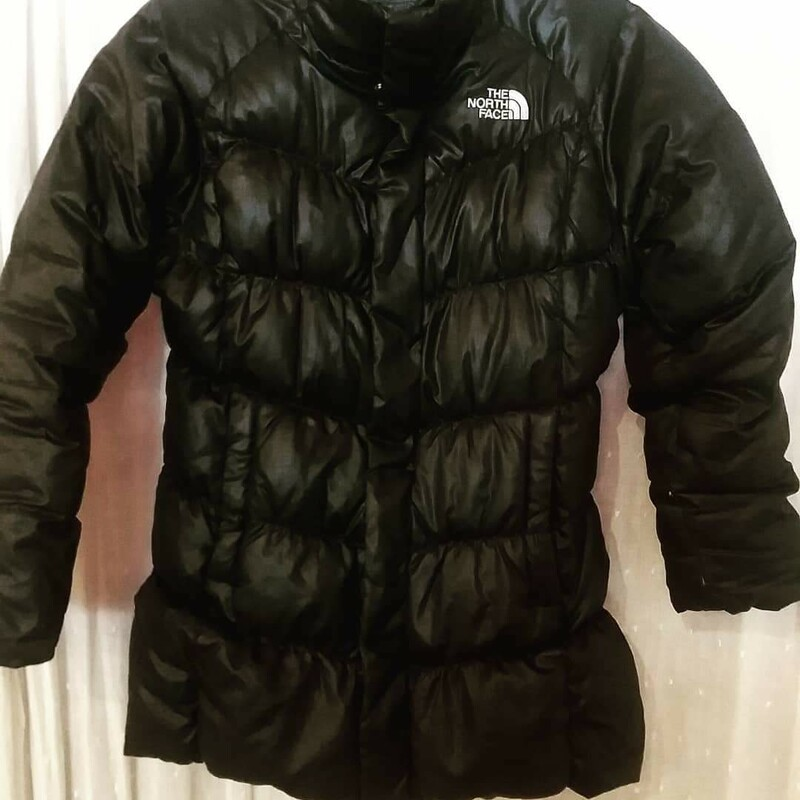 North Face 550 Down.