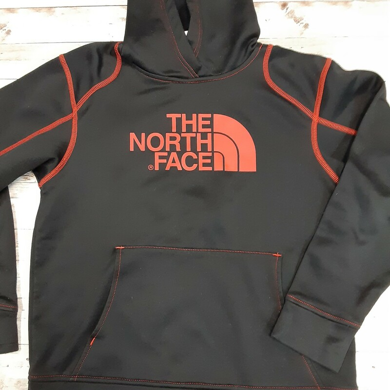 North Face Hoody.
