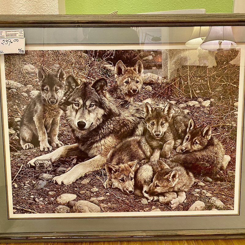 Signed and Framed Wolf Family Print<br /> Size: 41x32