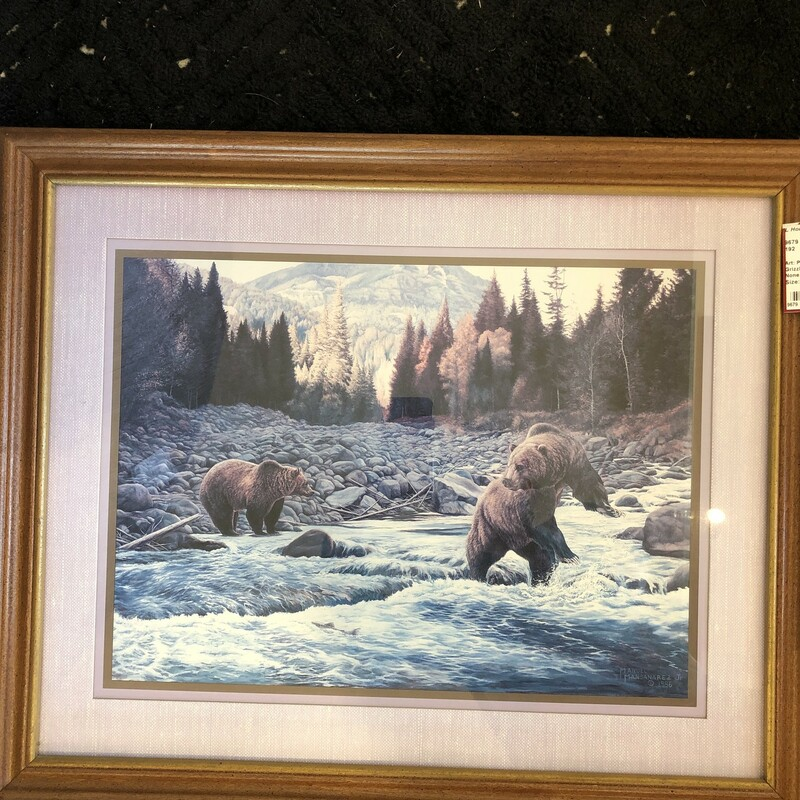 Grizzlies Framed.