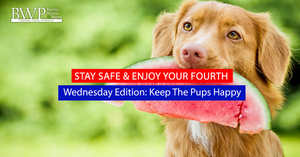 "BWP's ""Stay Safe & Enjoy your Fourth"" Wednesday's Edition: Keep the Pups Happy"